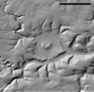 Steinheimer Becken Meteoritenkrater